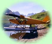 Aniak Air Guides float plane on a sunny remote lake
